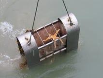 水科学研究- Spitsbergen 免版税库存图片