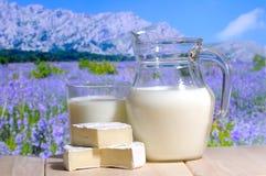 水罐牛奶 库存照片