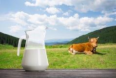 水罐用在木桌上的牛奶在母牛和山背景  免版税图库摄影