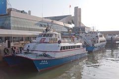 水翼艇小船 库存照片