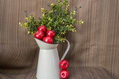 水能用红色塑料苹果和绿叶 库存照片