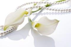 水芋属和珍珠 免版税图库摄影