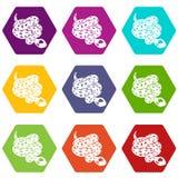水蟒蛇象设置了9传染媒介 库存例证