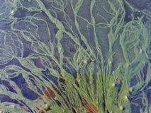 水表面上的海藻:在黑背景的绿色螺纹 库存图片