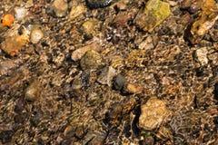 水表面和石头上的波纹 免版税库存照片