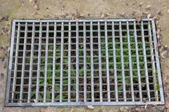 水路和路-草 水流失铁花格在草庭院领域的 钢生锈的滤栅在草庭院和混凝土里 免版税图库摄影