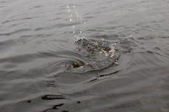 水飞溅在湖 库存图片