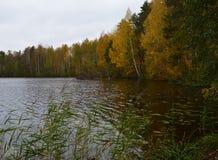 水,湖,风景,自然,河,秋天,天空,树,树,反射,森林,蓝色,秋天,池塘,公园,云彩,绿色,夏天 免版税库存图片