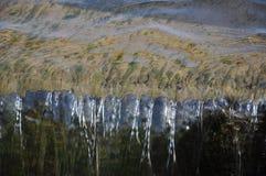 水,瀑布 免版税库存照片