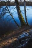 永恒的湖和树 免版税库存照片