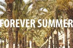 永远在棕榈树胡同前面的夏天标题 库存照片