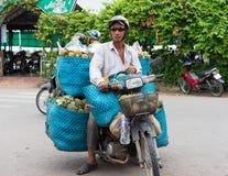 永隆,越南- 2014年11月30日:运输果子的摩托车司机在永隆市场,湄公河三角洲上 由马达的运输 库存图片