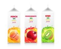汁液包裹集合 纸盒汁液箱子 桃子,石榴,猕猴桃 库存例证