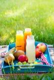 汁液另外瓶党夏时野餐 免版税库存图片