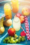 汁液另外颜色瓶果子野餐党 免版税库存图片