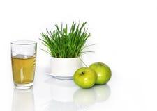 汁液和苹果 库存照片