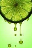 汁液柠檬 免版税库存照片