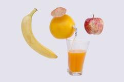 汁液自然桔子 免版税库存照片