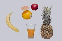 汁液自然桔子 图库摄影