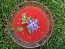 汁液蕃茄 库存照片