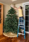 汇集人为圣诞树的老人为XMAS 免版税库存照片