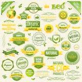 汇集传染媒介有机食品、Eco、生物标签和元素 食物和饮料的商标元素 免版税图库摄影