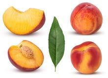 汇集成熟桃子果子,整个,用骨头,切片,叶子切成了两半 库存图片