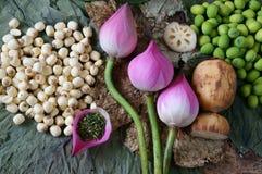 汇集莲花,种子,茶,健康食物 库存图片