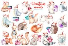 汇集,套水彩逗人喜爱的圣诞节森林动物例证 库存例证
