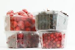 汇集结冰的莓果 库存照片