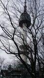 汉城塔在冬天 免版税库存照片