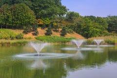 汉城森林公园在汉城市,韩国 库存图片