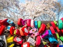 汉城,韩国- 2018年4月16日:爱钥匙和樱花namsan山在夏季在汉城塔,韩国 免版税库存图片