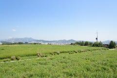 汉城,韩国- 2014年8月30日:HANEUL公园在汉城 免版税库存图片