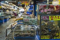 汉城- 2016年10月23日:卖鱼的供营商在Garak市场上我 免版税库存照片