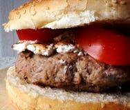 汉堡、乳清干酪和蕃茄 库存照片