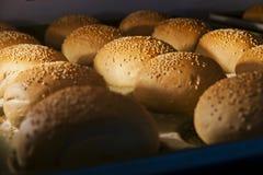 汉堡包小圆面包 免版税库存图片