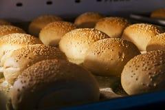 汉堡包小圆面包 库存图片