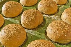 汉堡包小圆面包 库存照片