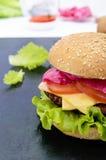 汉堡包用水多的炸肉排、蕃茄、泡菜和黄瓜、乳酪、绿色莴苣叶子和一个软的小圆面包用芝麻 库存图片