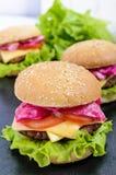 汉堡包用水多的炸肉排、蕃茄、泡菜和黄瓜、乳酪、绿色莴苣叶子和一个软的小圆面包 库存图片