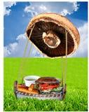 汉堡包蘑菇 库存图片