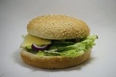 汉堡包 免版税库存图片