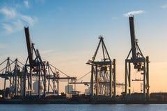 汉堡容器港  免版税库存照片