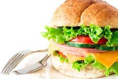 汉堡将面包夹在中间用烟肉、火腿和乳酪与vegetab 库存图片