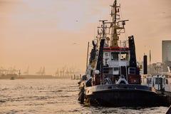 汉堡德国- 2015年11月01日:在港口汉堡quai的猛拉小船等待在evenning的下个猛拉工作 库存图片