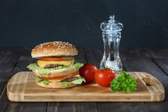 汉堡用一个双重小圆面包 库存照片