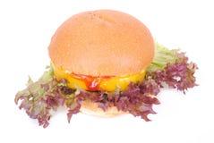 汉堡素食者白色 库存照片