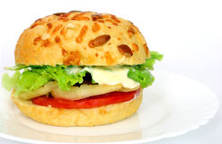 汉堡素食者 库存照片