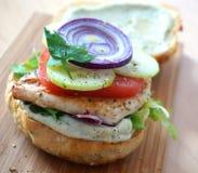 汉堡鸡快餐热鲜美 免版税库存照片